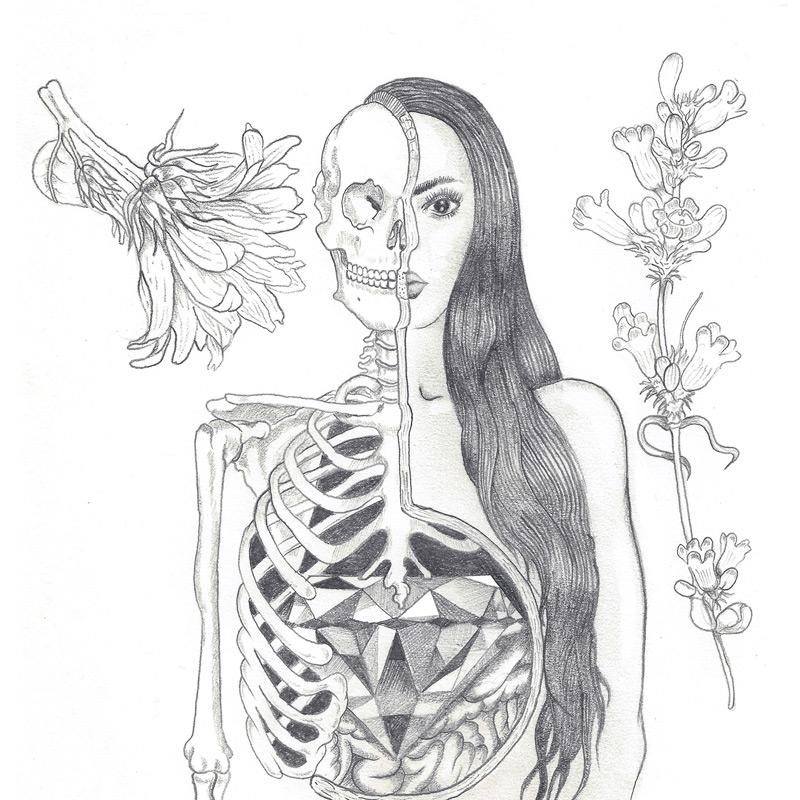 Anatomy/diamond « Xaviera López